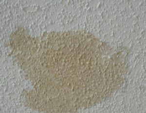 Water damage on a white ceiling.